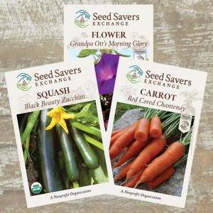 Seeds link