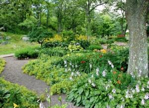 Backyard Garden Landscapes