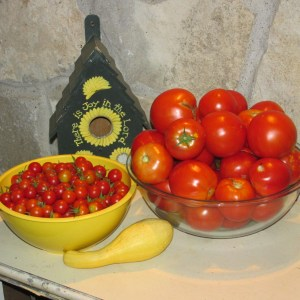 Some of the tomato harvest last Summer!