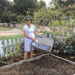 Fertilizing the Fall Garden