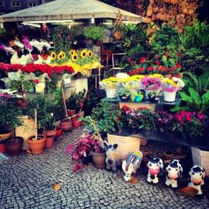 Flower market, Largo de Machado, Rio de Janeiro