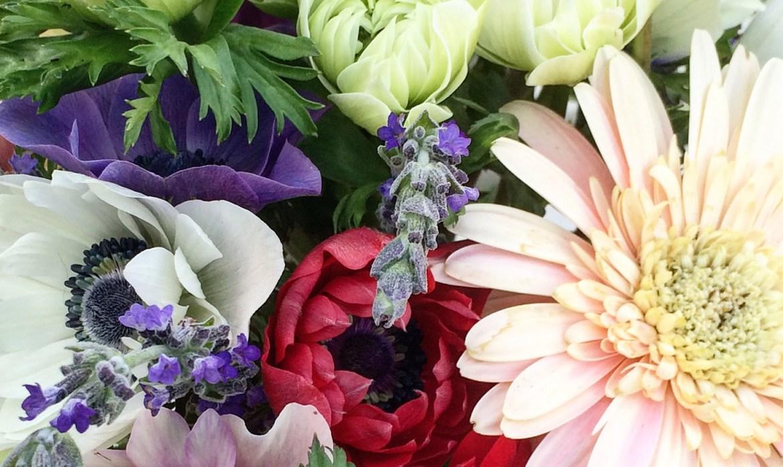 Florist's Garden Series: March in the Garden