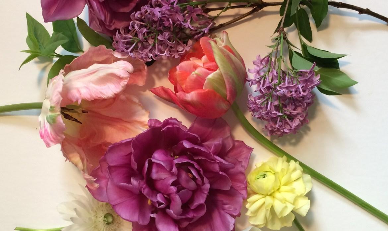 Florist's Garden Series: April Thriller