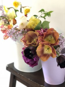Blossom and Branch Floral Subscription
