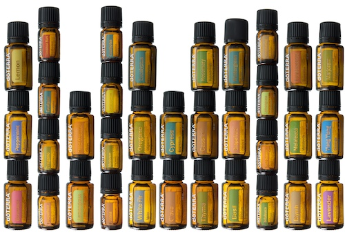 What are essential oils; doterra; blossoming butterfly; workshop; yoga; rotterdam; haarlem; den haag