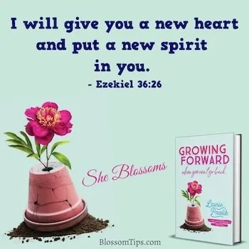 Blossom Tips Grow Spiritually Healthy Relationship Jesus Exodus 28
