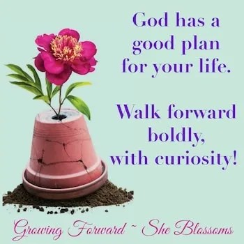 Blossom Tips Exodus 15 Are You Worried You'll Run Out of Money
