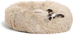 personalized gifts for old dogs