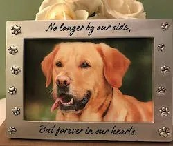 Pet Memorial Sympathy Gift After a Dog Dies