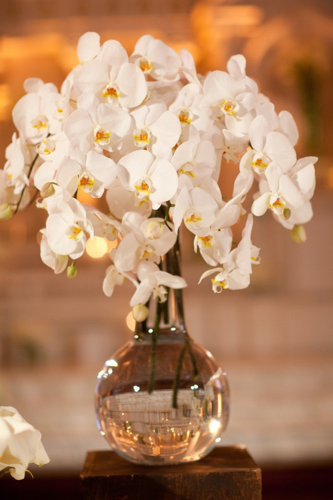 Gorgeous white orchid centerpiece inspiration b lovely
