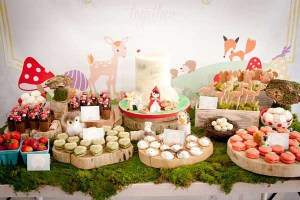 Enchanted Forest Woodland Parties!
