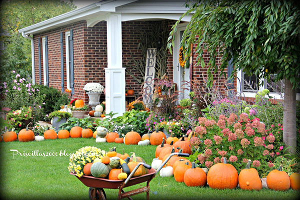 Look at all of the fun pumpkins on this fall porch!