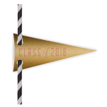Gold Pennant Straw flags - See More Gold Graduation Ideas on B. Lovely Events