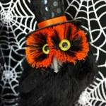Spooktacular Halloween Party Ideas. Halloween Owl- B. Lovely Events