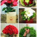 Lovely Christmas Flowers From Flowers For Everyone