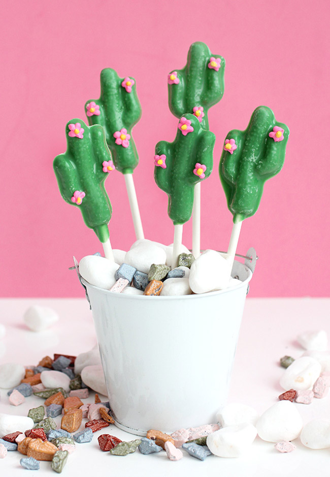 Chocolate cactus pops! Fun - See Lovely & Fun Cactus Ideas on B. Lovely Events