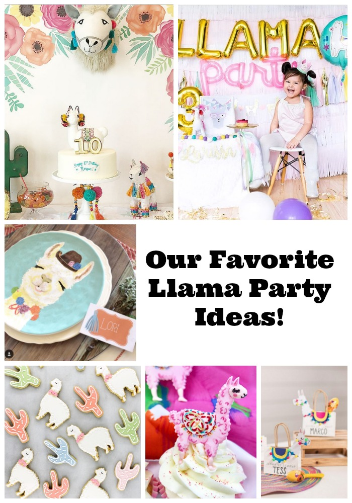 Llama party ideas- B. Lovely Events