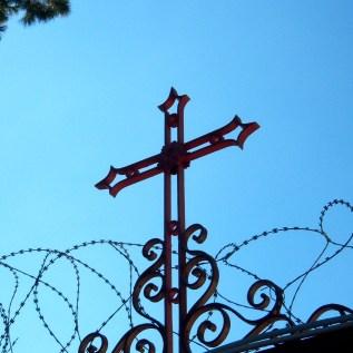 Cross among thorns