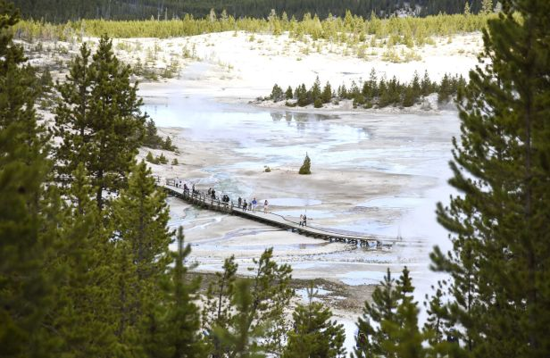 Tourist Tourism, Yellowstone National Park File
