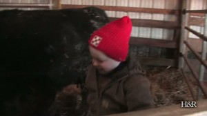 Kids on the cattle farm