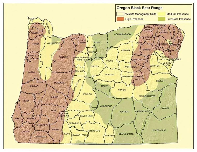 Bears In Oregon Map.Map Bears Oregon Black