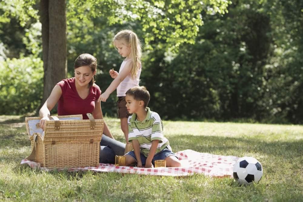 summer-food-picnic