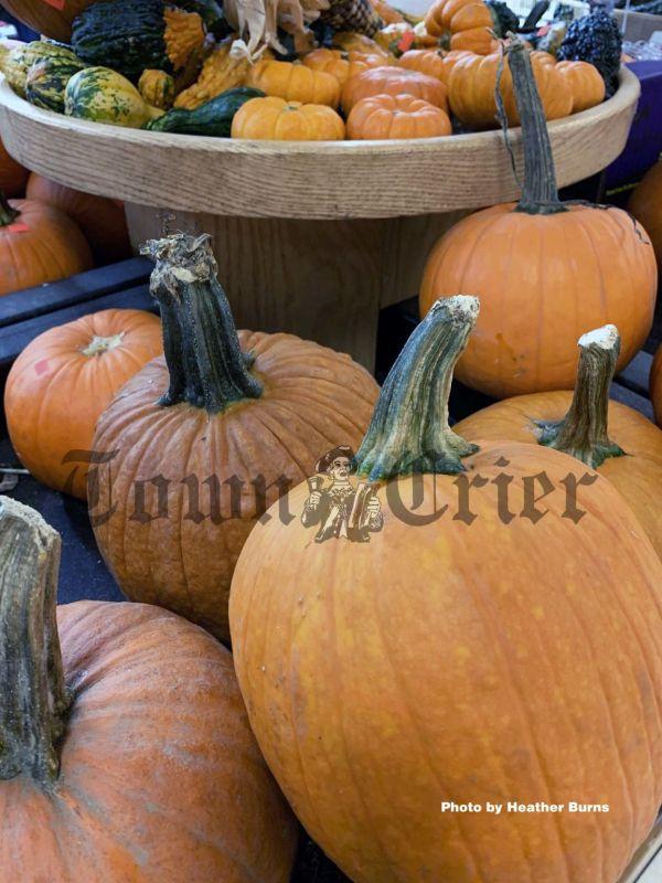 Skip pumpkin-flavored and just have pumpkin