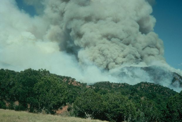 Gallery 1994 South Canyon Fire