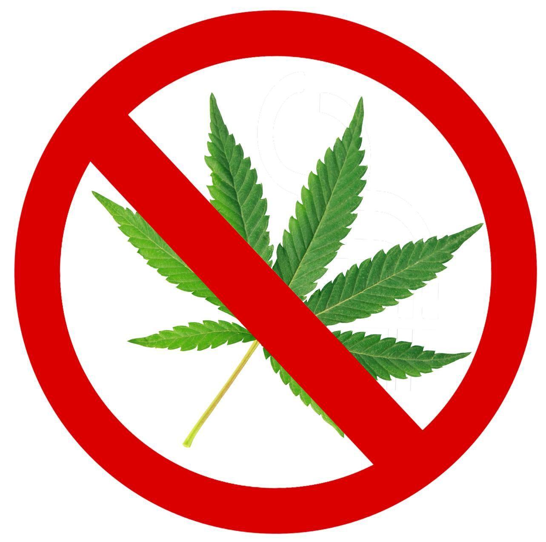 No marijuana in Ocean City | | pressofatlanticcity.com