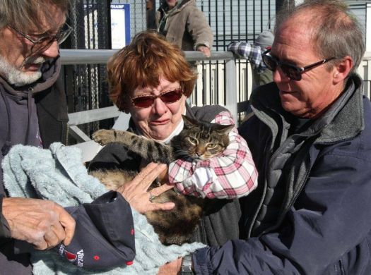 Mahla Reunited with Her Humans