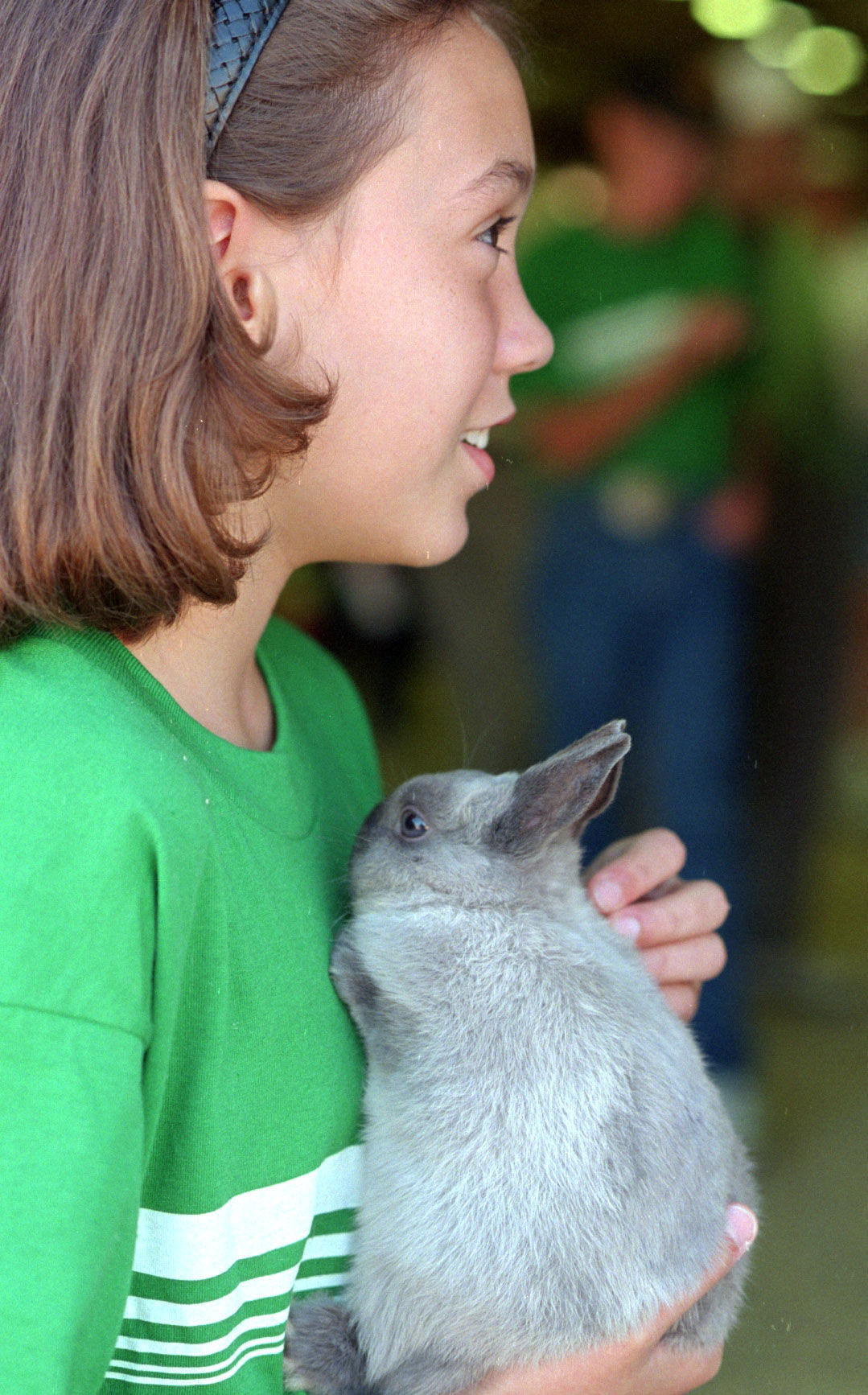 Photos 4 H Rabbits