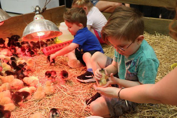Green Living Fair finds success in Somerset sustainable for sixth year