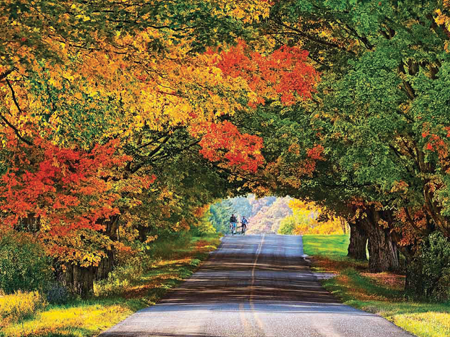 Michigan S Peak Color Depends On Next 30 Days News For Fenton Linden Holly Mi Tctimes Com