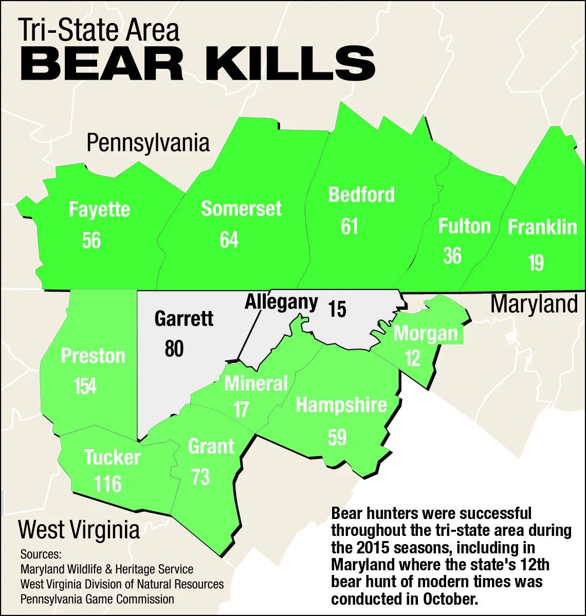 Maryland Bear Hunting Zone Could Expand