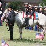 Trail Ends For Riderless Horse Who Graced Waco Veterans Day Parades Local News Wacotrib Com