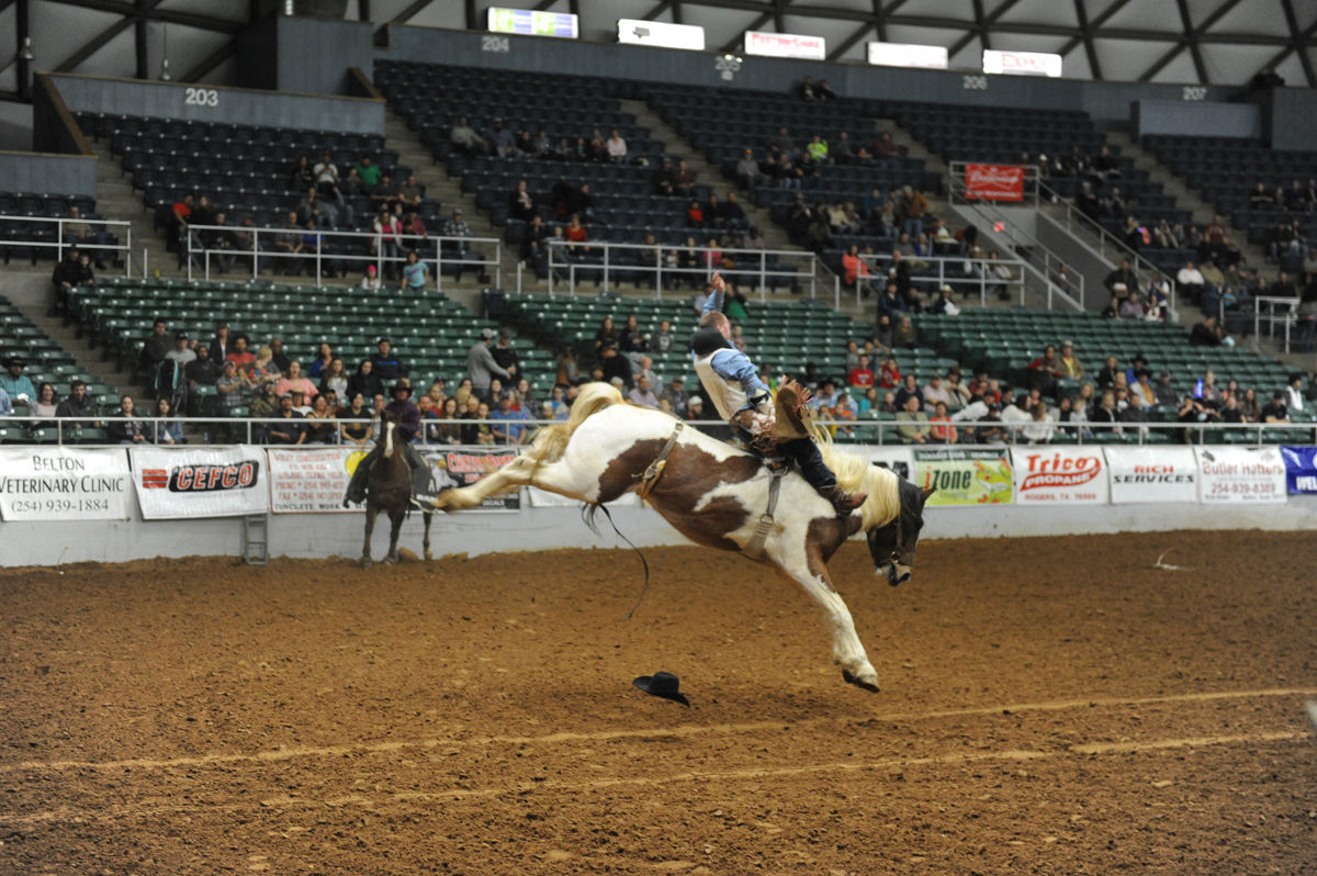 Bell County Rodeo Sports Forthoodsentinel Com