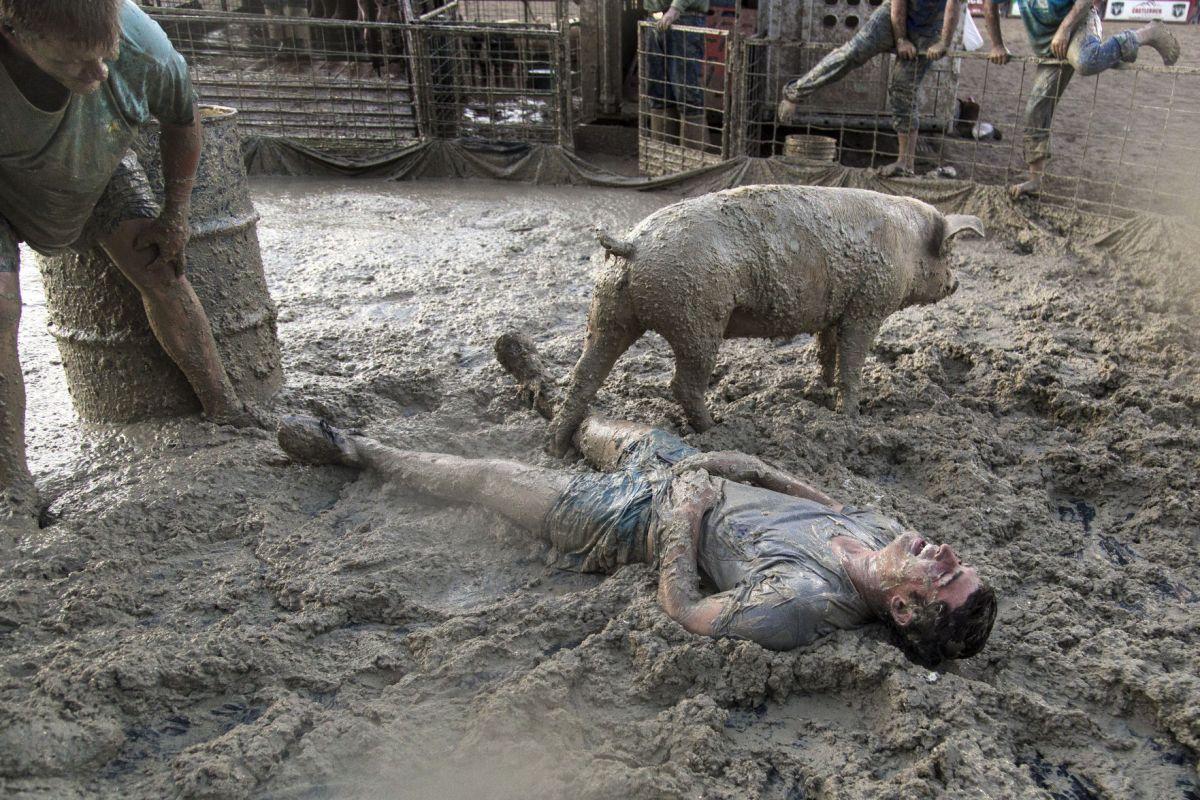 Porkys Got Home Pit Advantage Teton County Fair