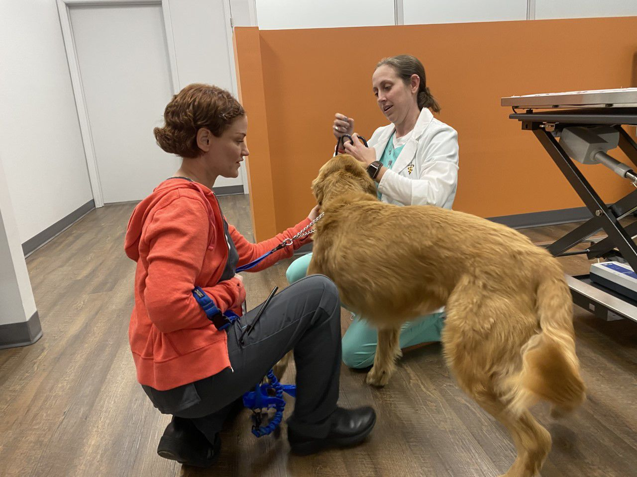 VetIQ Petcare Wellness Center comes to Mount Pleasant Walmart ...