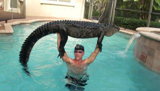 Your daily 6: Woman nabbed for selling fetuses, man hoodwinks 185-lb alligator, NASA makes