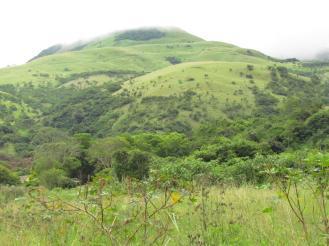 Mkomazi hillside