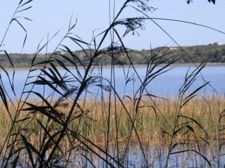 Mgobozeleni Lake at end of Trail