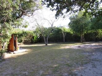 Ilala Palm campsite 5