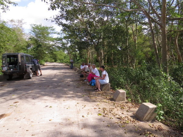 Tea break on the causeway before entering Mkuze. Right in the heart of the fig forest..