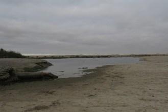Estuary beside Alte Brucke.