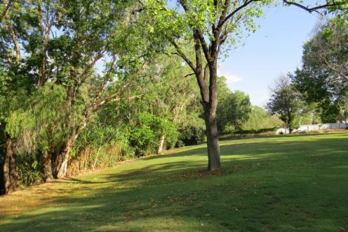 Timber Creek Camp