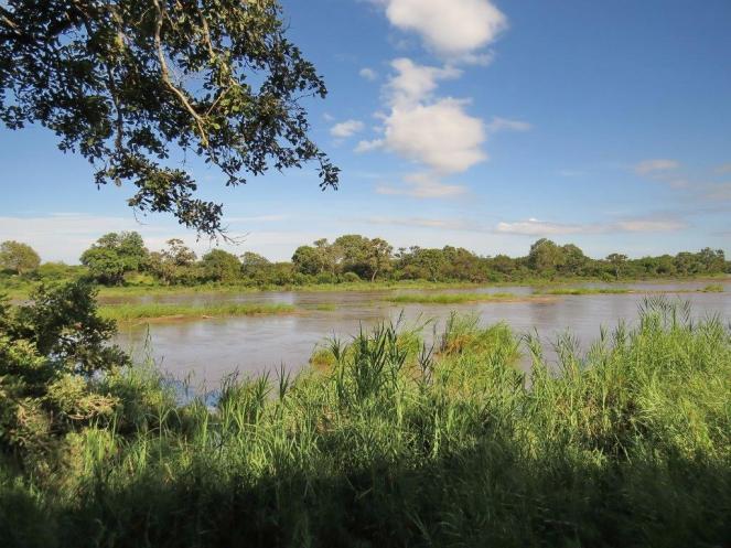 Ratelpan hide view of Timbavati River