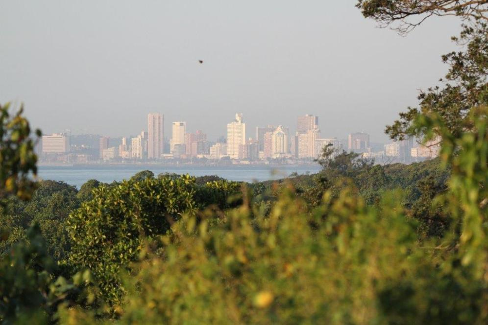 View of Durban from one of the Beachwood tee boxes