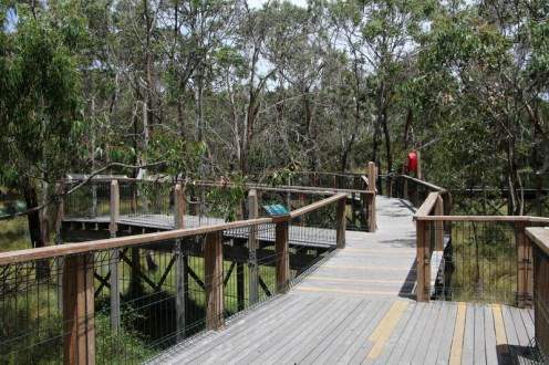 Koala Boardwalk