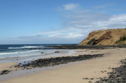 Main part of the beach where the Little Penguins exit the sea