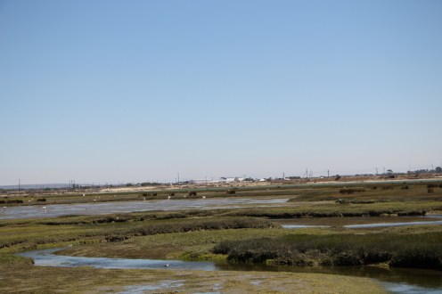Velddrif at low tide - view from the hide.